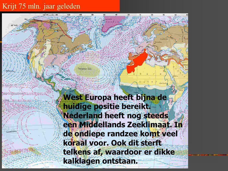 Krijt 75 mln. jaar geleden West Europa heeft bijna de huidige positie bereikt. Nederland heeft nog steeds een Middellands Zeeklimaat. In de ondiepe ra
