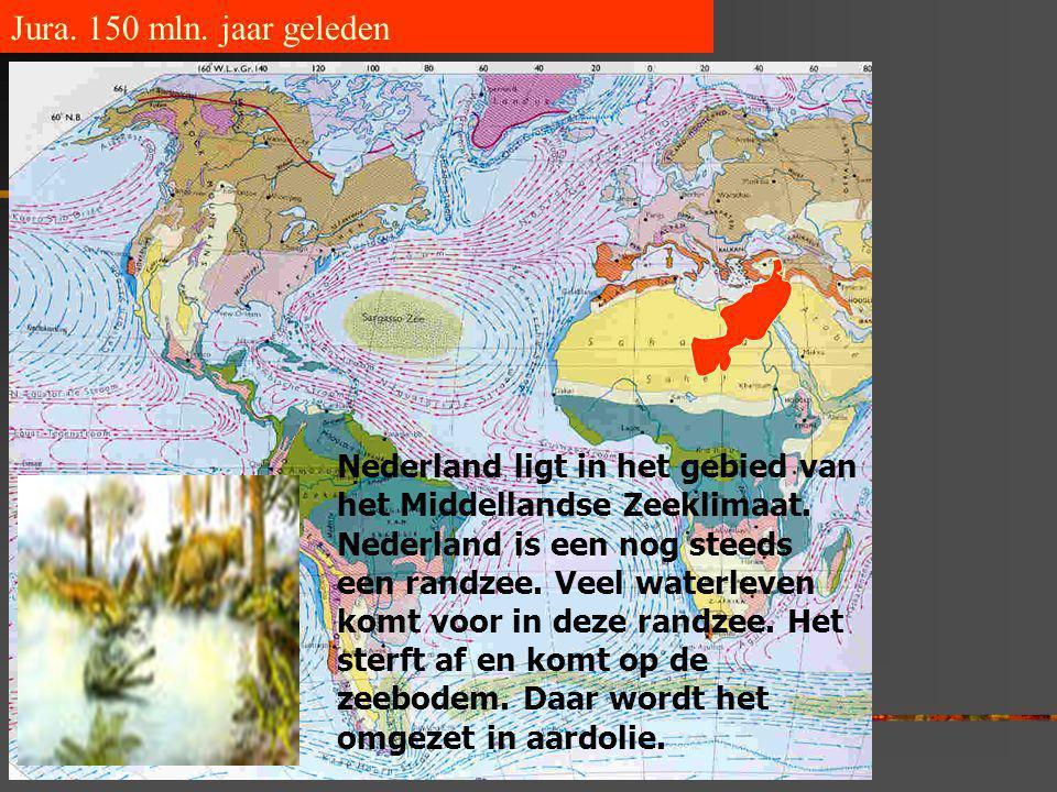 Jura. 150 mln. jaar geleden Nederland ligt in het gebied van het Middellandse Zeeklimaat. Nederland is een nog steeds een randzee. Veel waterleven kom