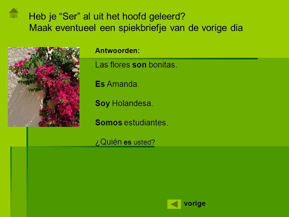 """Heb je """"Ser"""" al uit het hoofd geleerd? vorige Maak eventueel een spiekbriefje van de vorige dia Las flores son bonitas. Es Amanda. Soy Holandesa. Somo"""