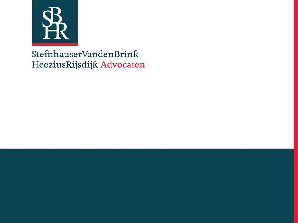 Paul Steinhauser Slot Zeist 12 maart 2008 HET VORMMERK DE TECHNIEKRESTRICTIE