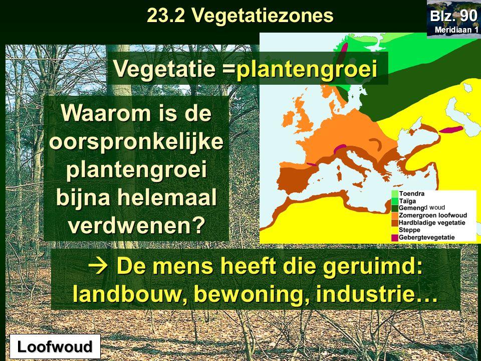 23.2 Vegetatiezones Loofwoud d woud Vegetatie = plantengroei Waarom is de oorspronkelijke plantengroei bijna helemaal verdwenen?  De mens heeft die g