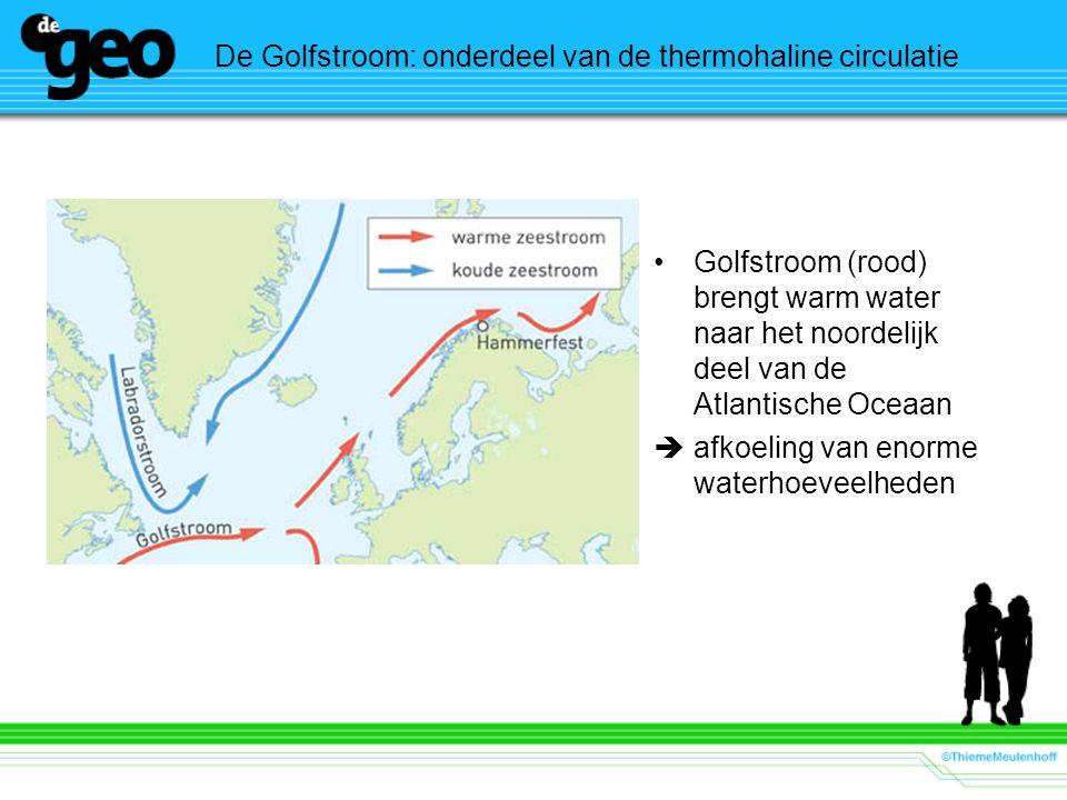 De Golfstroom: onderdeel van de thermohaline circulatie Golfstroom (rood) brengt warm water naar het noordelijk deel van de Atlantische Oceaan  afkoe