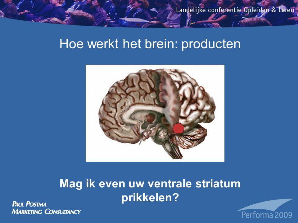 Hoe werkt het brein: twee beslissingssystemen