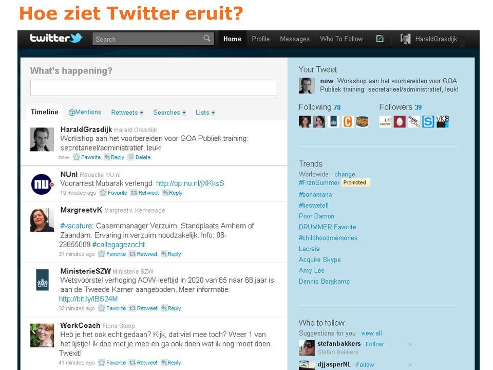 Hoe ziet Twitter eruit?