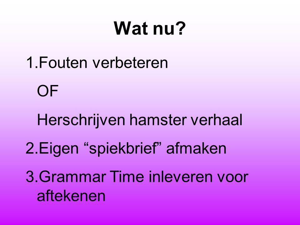 """Wat nu? 1.Fouten verbeteren OF Herschrijven hamster verhaal 2.Eigen """"spiekbrief"""" afmaken 3.Grammar Time inleveren voor aftekenen"""