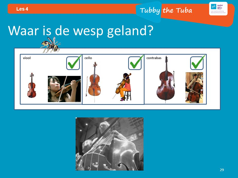 29 Les 4 Waar is de wesp geland viool cello contrabas