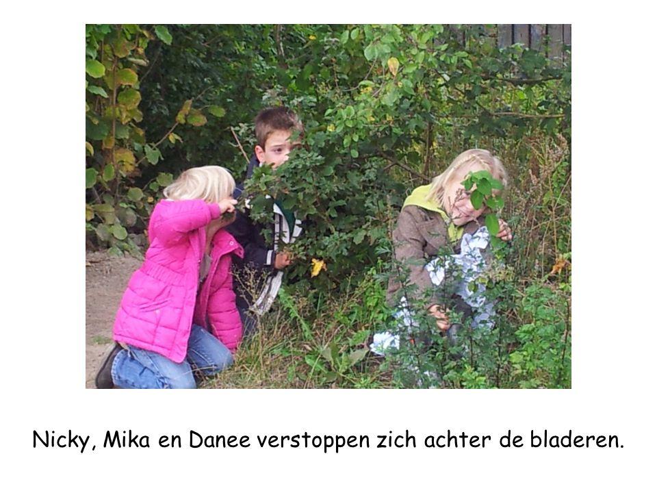Nicky, Mika en Danee verstoppen zich achter de bladeren.