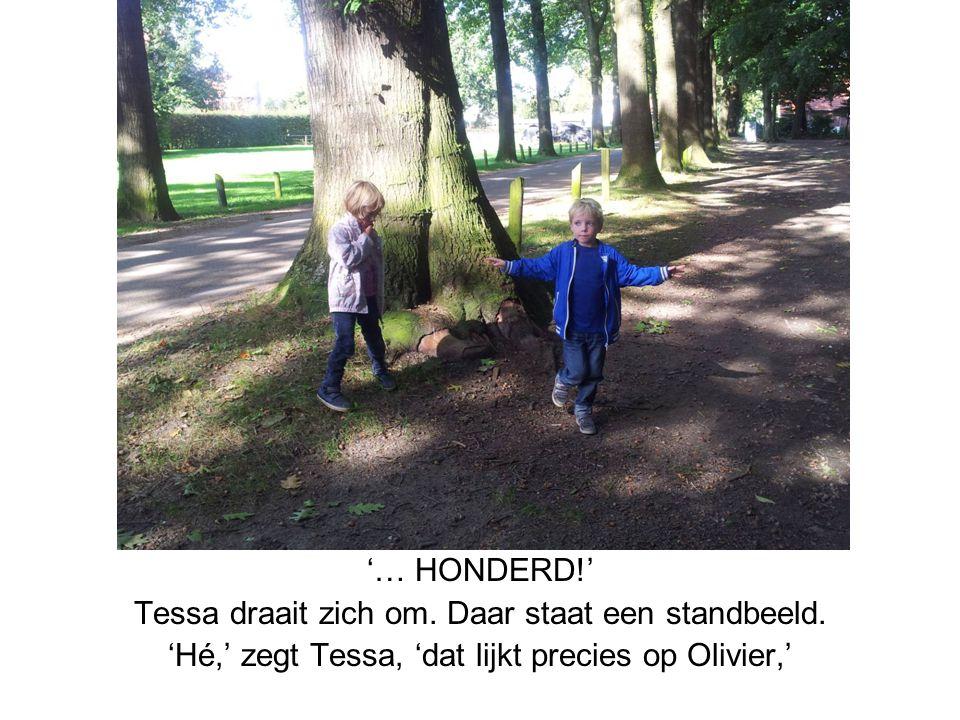 '… HONDERD!' Tessa draait zich om. Daar staat een standbeeld. 'Hé,' zegt Tessa, 'dat lijkt precies op Olivier,'