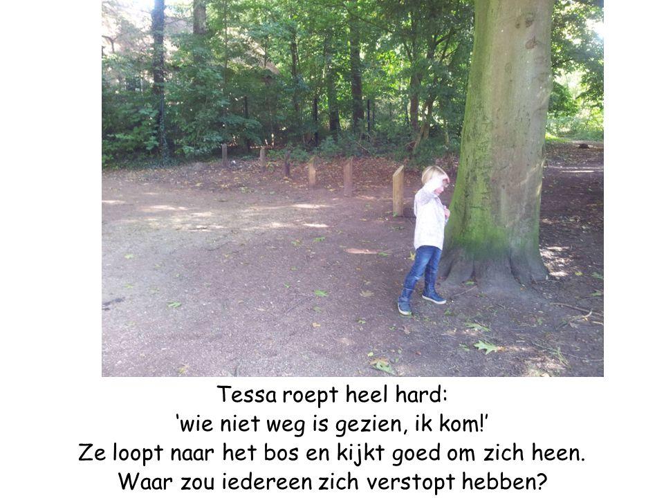 Tessa roept heel hard: 'wie niet weg is gezien, ik kom!' Ze loopt naar het bos en kijkt goed om zich heen. Waar zou iedereen zich verstopt hebben?