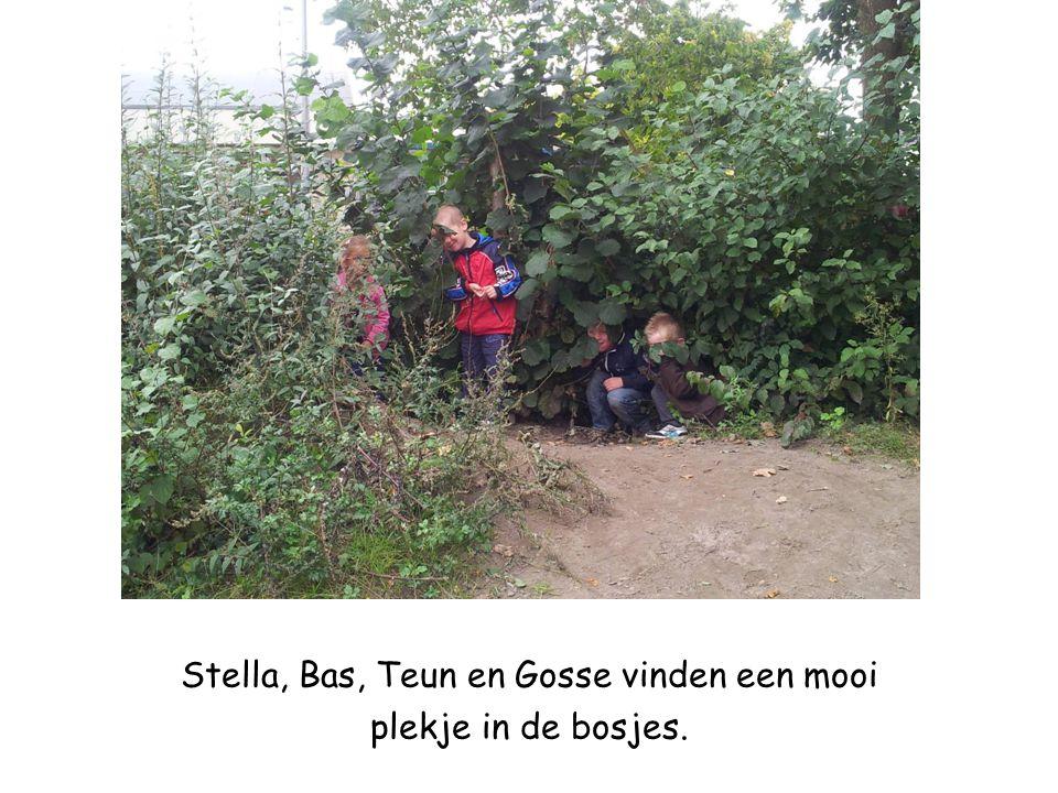 Stella, Bas, Teun en Gosse vinden een mooi plekje in de bosjes.
