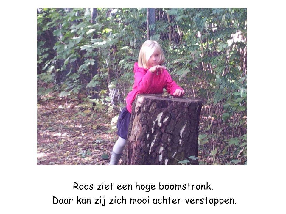 Roos ziet een hoge boomstronk. Daar kan zij zich mooi achter verstoppen.