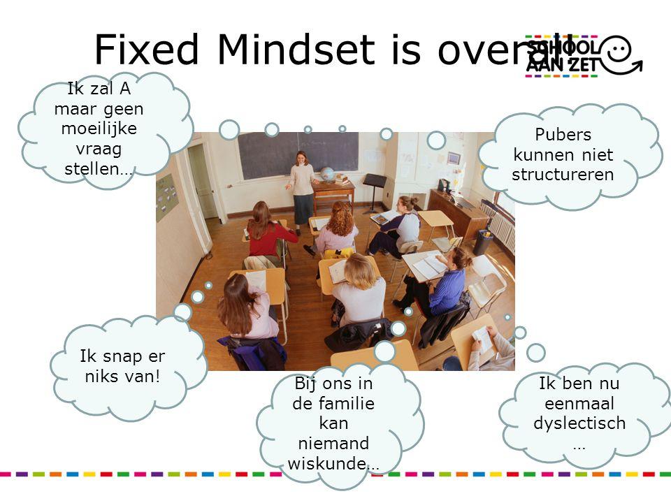 Fixed Mindset is overal! Pubers kunnen niet structureren Ik ben nu eenmaal dyslectisch … Ik zal A maar geen moeilijke vraag stellen… Ik snap er niks v