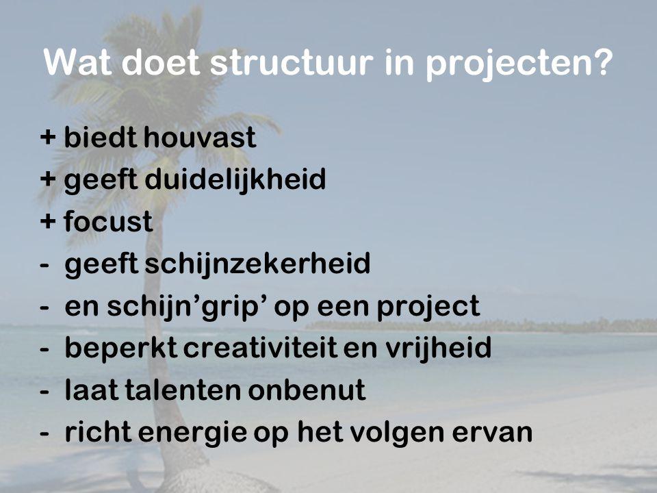 Wat doet structuur in projecten.