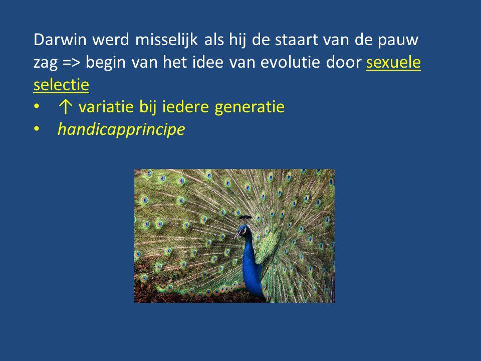 Darwin werd misselijk als hij de staart van de pauw zag => begin van het idee van evolutie door sexuele selectie ↑ variatie bij iedere generatie handi