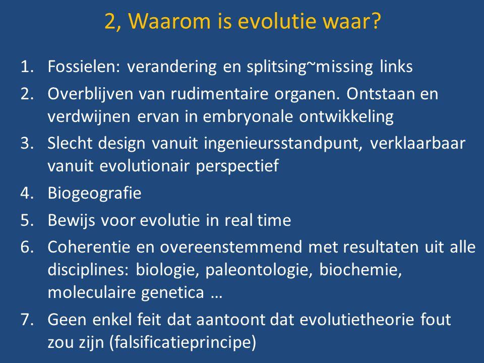 2, Waarom is evolutie waar? 1.Fossielen: verandering en splitsing~missing links 2.Overblijven van rudimentaire organen. Ontstaan en verdwijnen ervan i