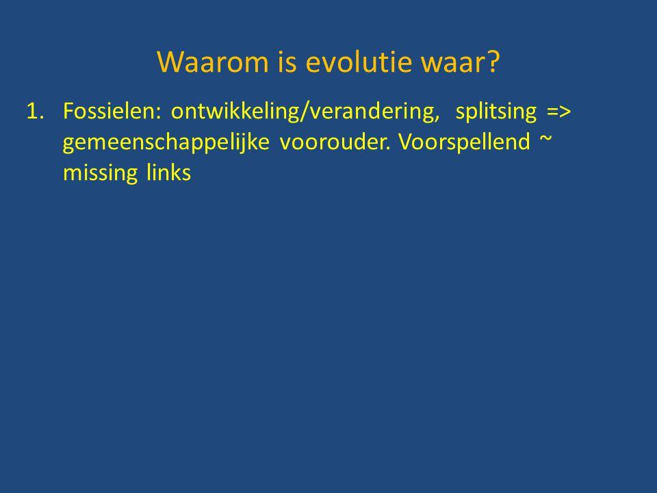 1.Fossielen: ontwikkeling/verandering, splitsing => gemeenschappelijke voorouder. Voorspellend ~ missing links Waarom is evolutie waar?
