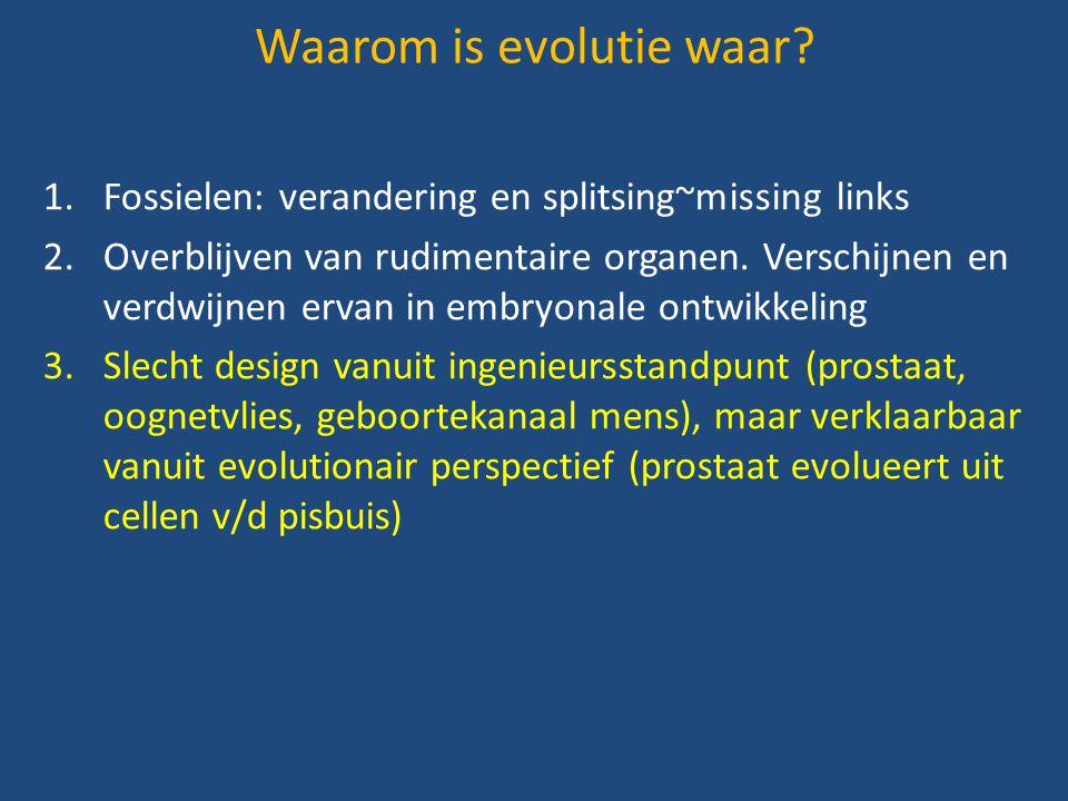 1.Fossielen: verandering en splitsing~missing links 2.Overblijven van rudimentaire organen. Verschijnen en verdwijnen ervan in embryonale ontwikkeling