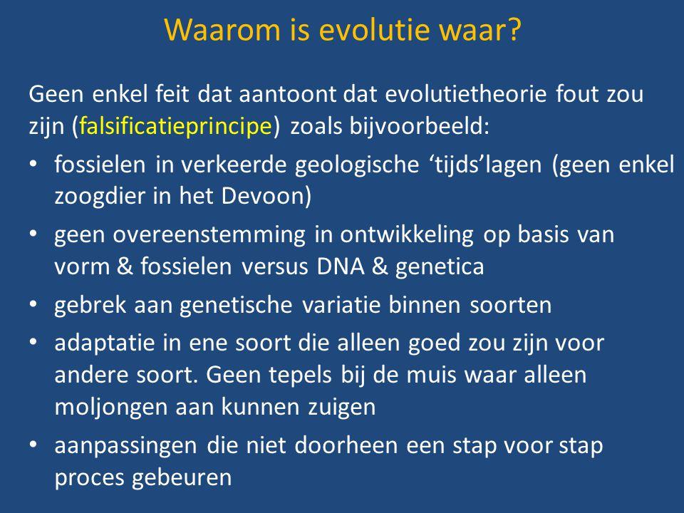 Geen enkel feit dat aantoont dat evolutietheorie fout zou zijn (falsificatieprincipe) zoals bijvoorbeeld: fossielen in verkeerde geologische 'tijds'la