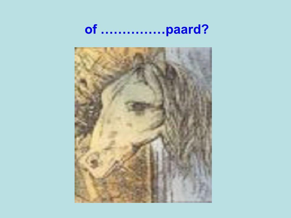 of ……………paard?