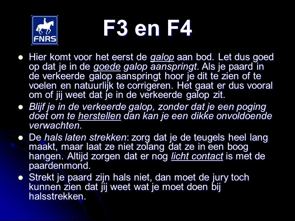 F3 en F4 De teugels op maat doe je op de correcte manier.