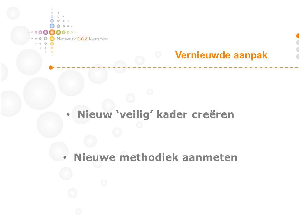  Nieuw 'veilig' kader creëren  Nieuwe methodiek aanmeten Vernieuwde aanpak