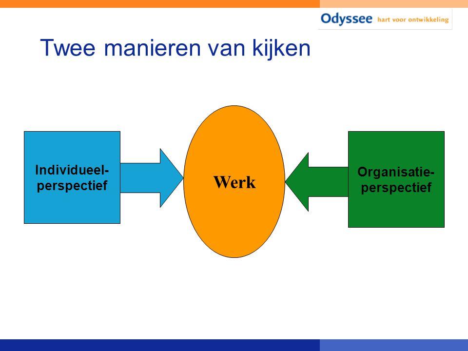 Twee manieren van kijken Organisatie- perspectief Individueel- perspectief Werk