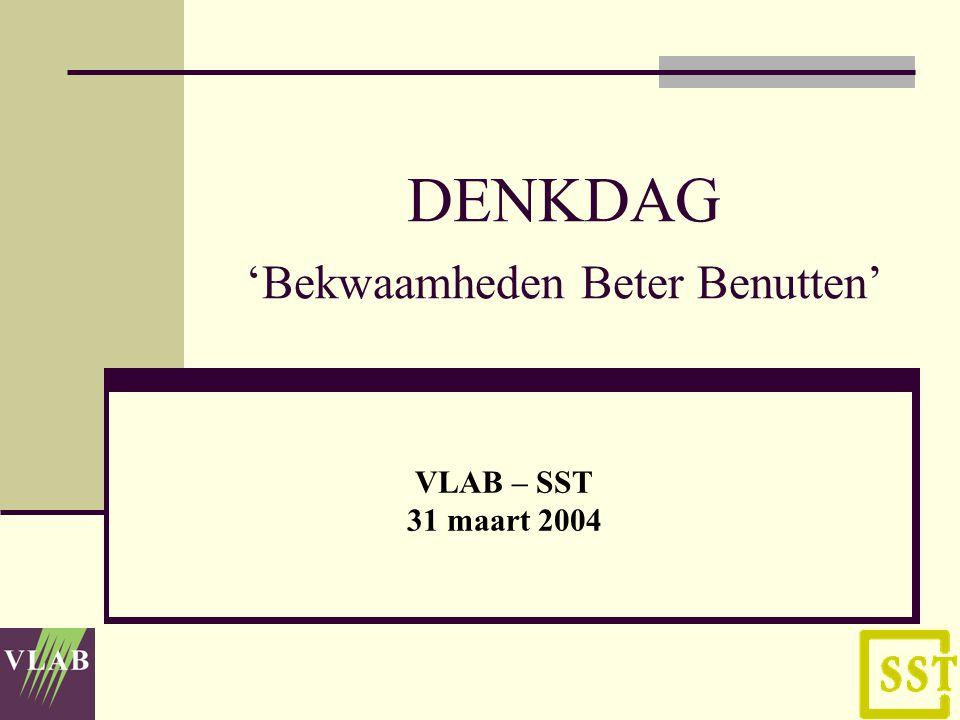 DENKDAG 'Bekwaamheden Beter Benutten' VLAB – SST 31 maart 2004