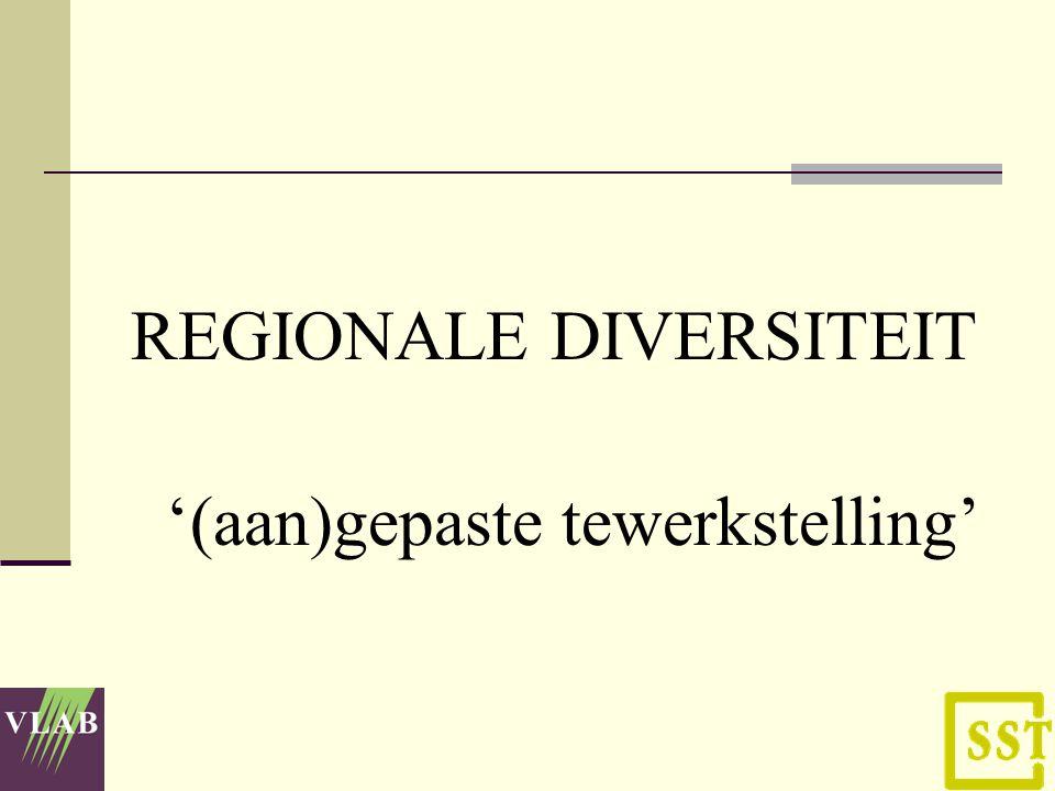 REGIONALE DIVERSITEIT '(aan)gepaste tewerkstelling'