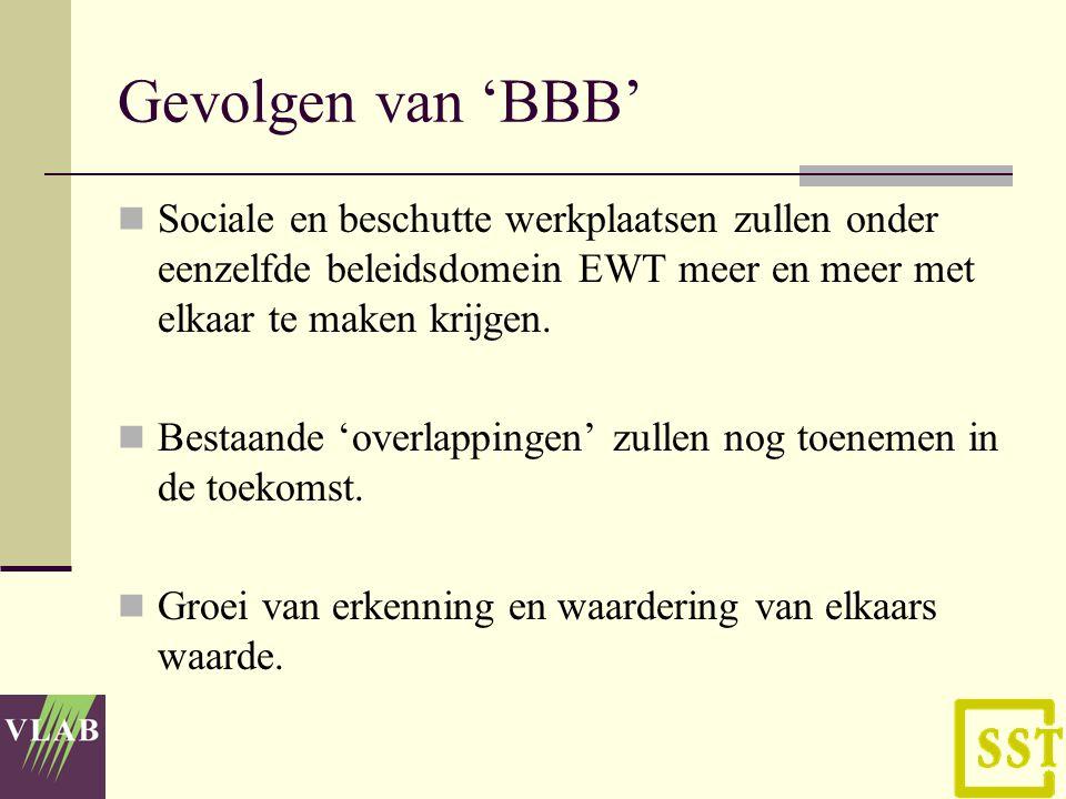 Gevolgen van 'BBB' Sociale en beschutte werkplaatsen zullen onder eenzelfde beleidsdomein EWT meer en meer met elkaar te maken krijgen.