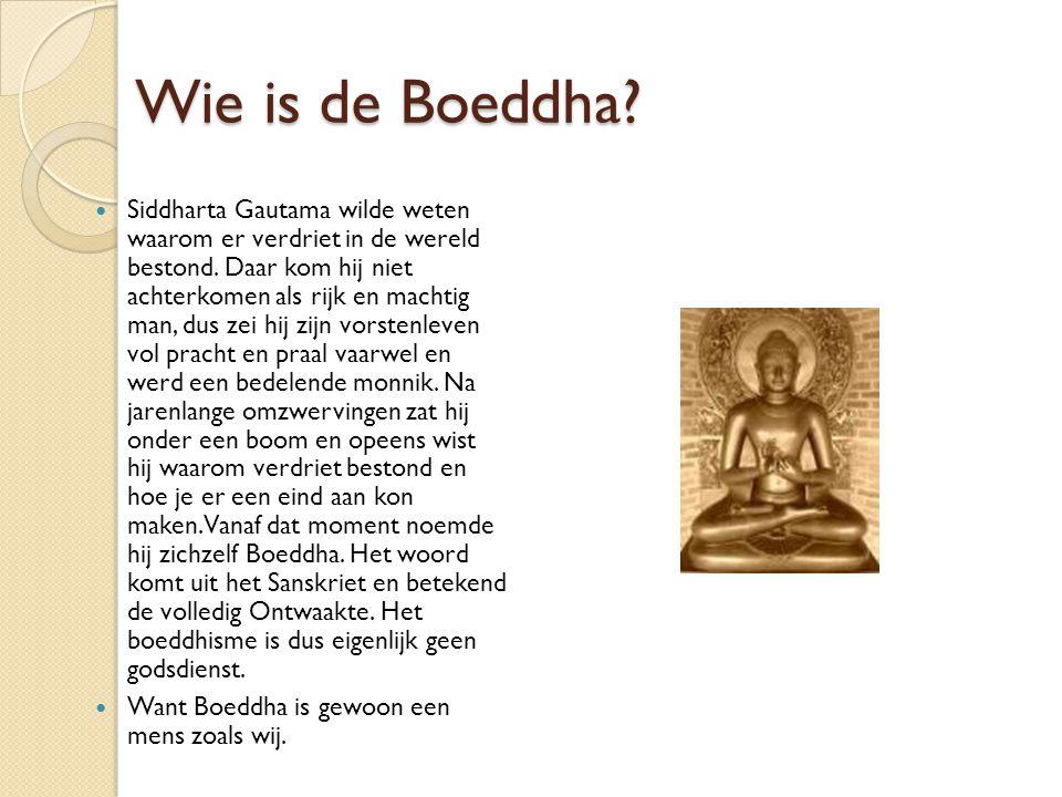 Wie is de Boeddha? Siddharta Gautama wilde weten waarom er verdriet in de wereld bestond. Daar kom hij niet achterkomen als rijk en machtig man, dus z
