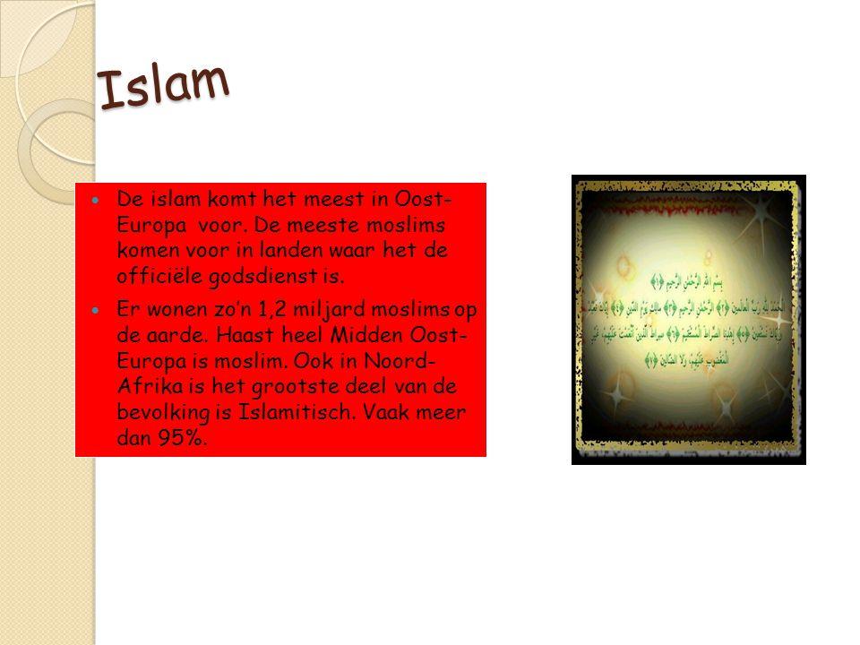 Islam De islam komt het meest in Oost- Europa voor. De meeste moslims komen voor in landen waar het de officiële godsdienst is. Er wonen zo'n 1,2 milj