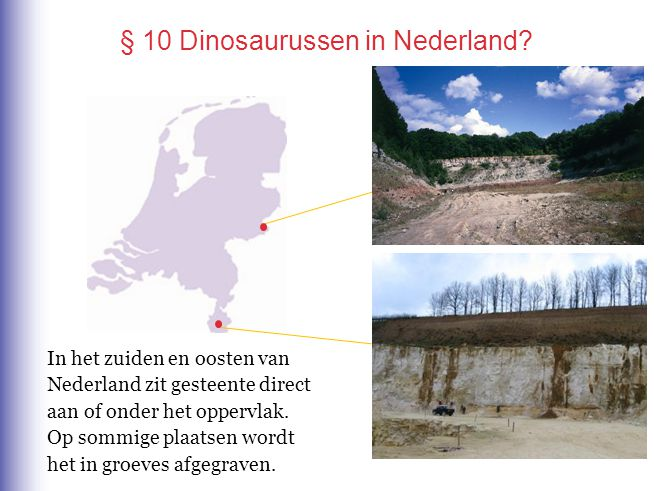 § 10 Dinosaurussen in Nederland? In het zuiden en oosten van Nederland zit gesteente direct aan of onder het oppervlak. Op sommige plaatsen wordt het