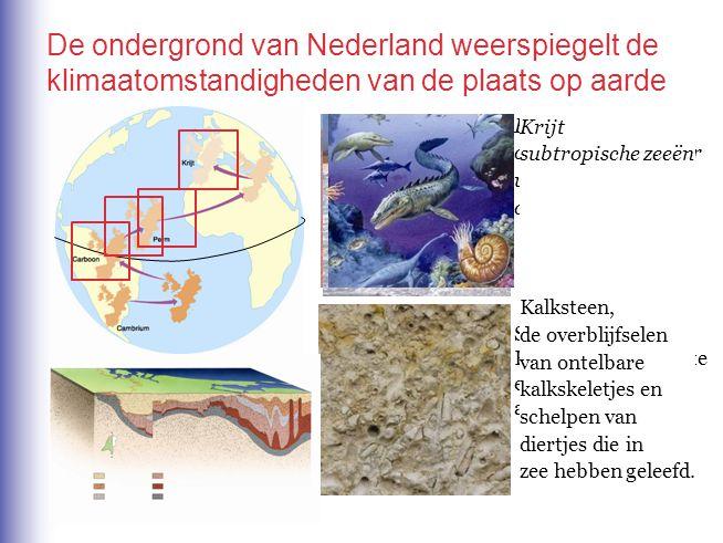 De ondergrond van Nederland weerspiegelt de klimaatomstandigheden van de plaats op aarde Carboon tropisch moerassen In de steenkool komen afdrukken vo