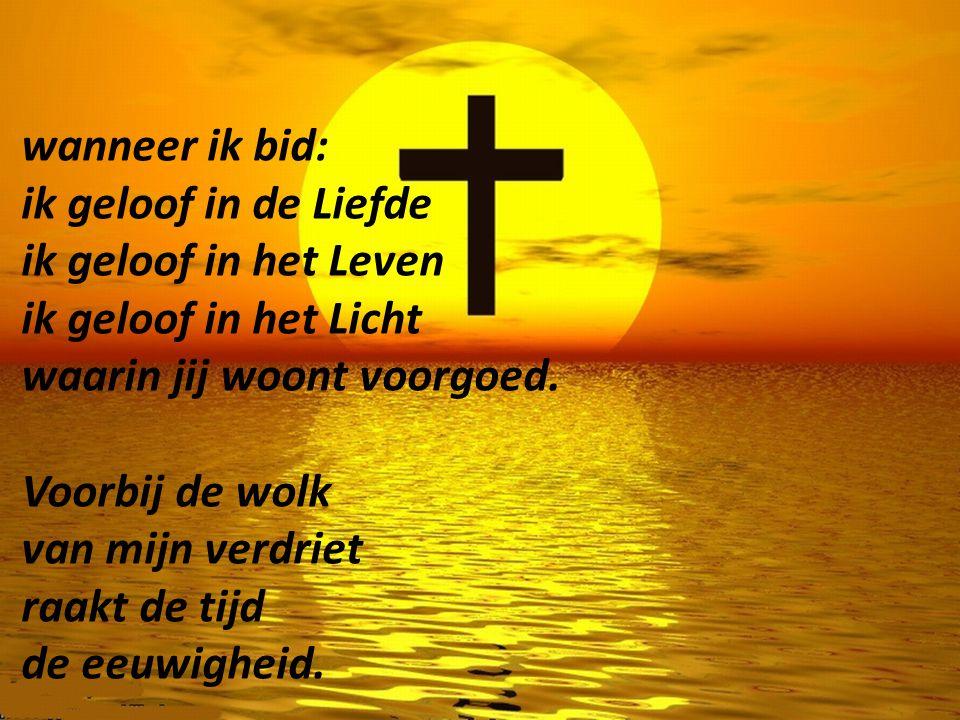 wanneer ik bid: ik geloof in de Liefde ik geloof in het Leven ik geloof in het Licht waarin jij woont voorgoed.