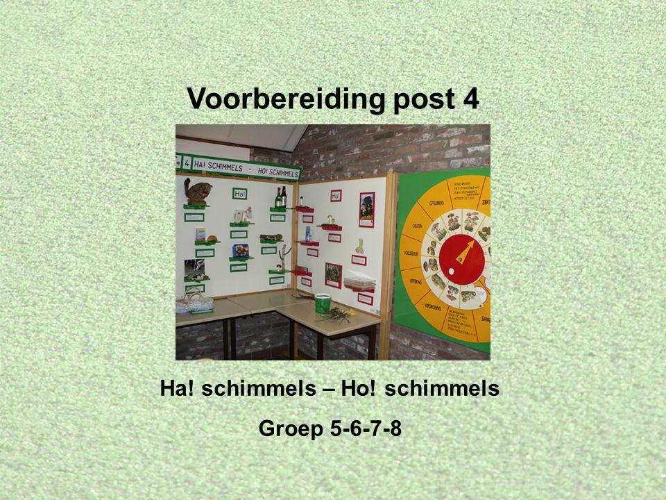 Voorbereiding post 4 Ha! schimmels – Ho! schimmels Groep 5-6-7-8