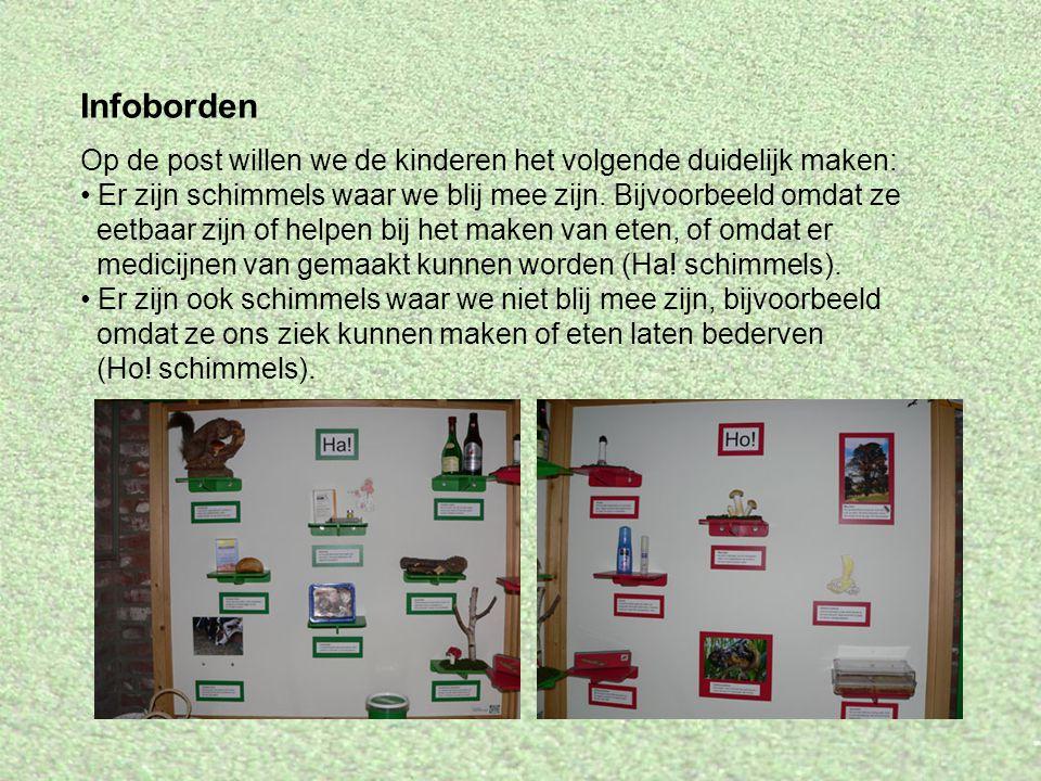 Infoborden Op de post willen we de kinderen het volgende duidelijk maken: Er zijn schimmels waar we blij mee zijn. Bijvoorbeeld omdat ze eetbaar zijn