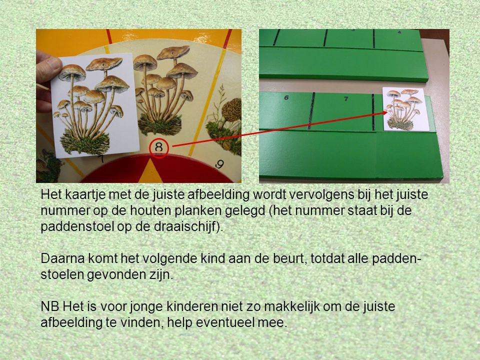 Het kaartje met de juiste afbeelding wordt vervolgens bij het juiste nummer op de houten planken gelegd (het nummer staat bij de paddenstoel op de dra