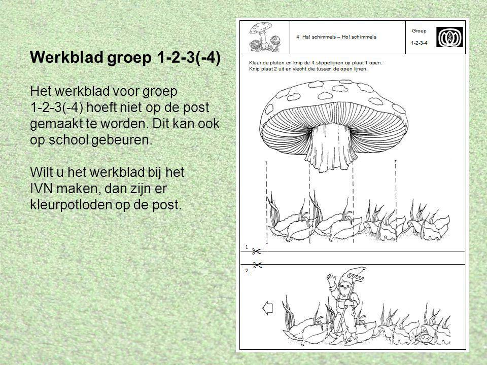 Werkblad groep 1-2-3(-4) Het werkblad voor groep 1-2-3(-4) hoeft niet op de post gemaakt te worden. Dit kan ook op school gebeuren. Wilt u het werkbla