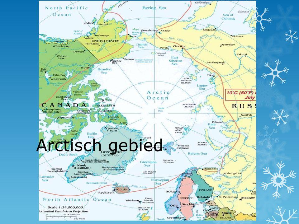 Arctisch gebied