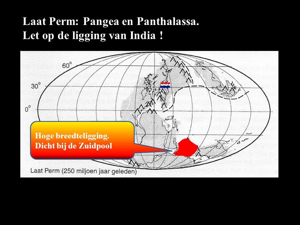 Laat Perm: Pangea en Panthalassa. Let op de ligging van India ! Hoge breedteligging. Dicht bij de Zuidpool