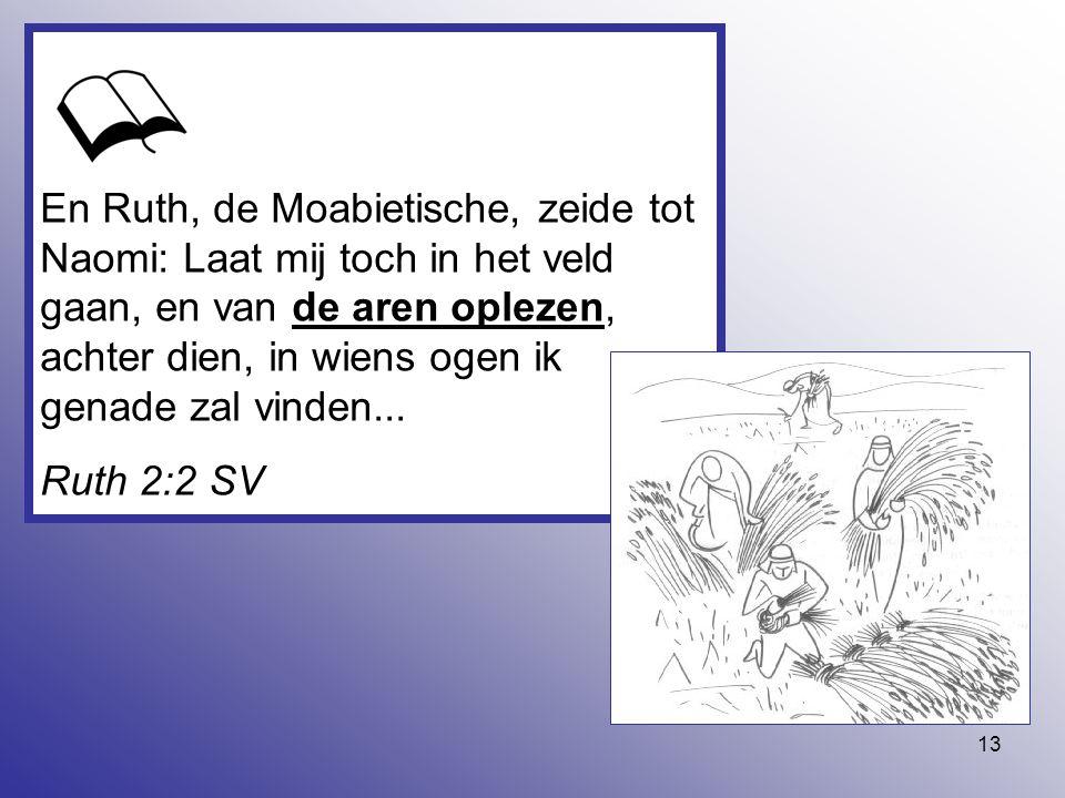 13 En Ruth, de Moabietische, zeide tot Naomi: Laat mij toch in het veld gaan, en van de aren oplezen, achter dien, in wiens ogen ik genade zal vinden.