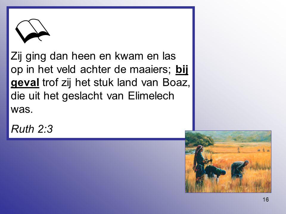 16 Zij ging dan heen en kwam en las op in het veld achter de maaiers; bij geval trof zij het stuk land van Boaz, die uit het geslacht van Elimelech wa