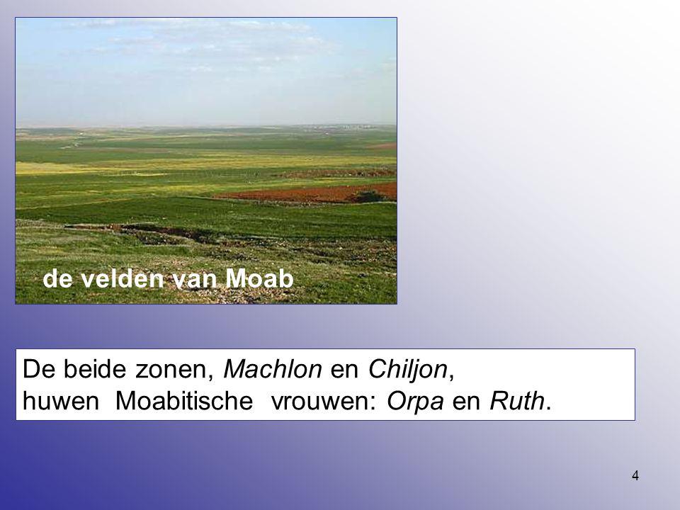 4 De beide zonen, Machlon en Chiljon, huwen Moabitische vrouwen: Orpa en Ruth. de velden van Moab