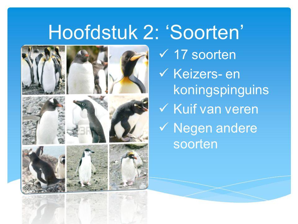 Hoofdstuk 2: 'Soorten' 17 soorten Keizers- en koningspinguins Kuif van veren Negen andere soorten