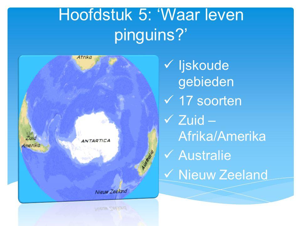 Hoofdstuk 5: 'Waar leven pinguins?' Ijskoude gebieden 17 soorten Zuid – Afrika/Amerika Australie Nieuw Zeeland