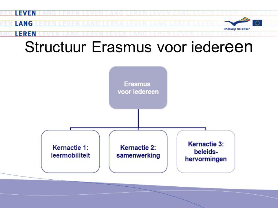 Structuur Erasmus voor ieder een