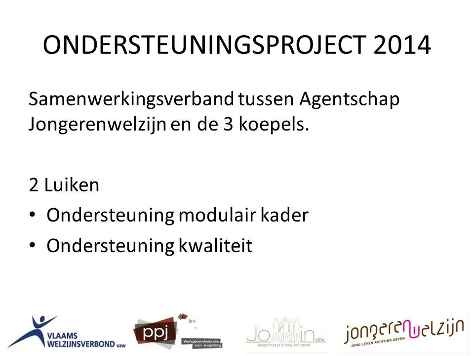 ONDERSTEUNINGSPROJECT 2014 Samenwerkingsverband tussen Agentschap Jongerenwelzijn en de 3 koepels.