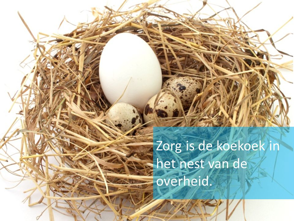 Zorg is de koekoek in het nest van de overheid.