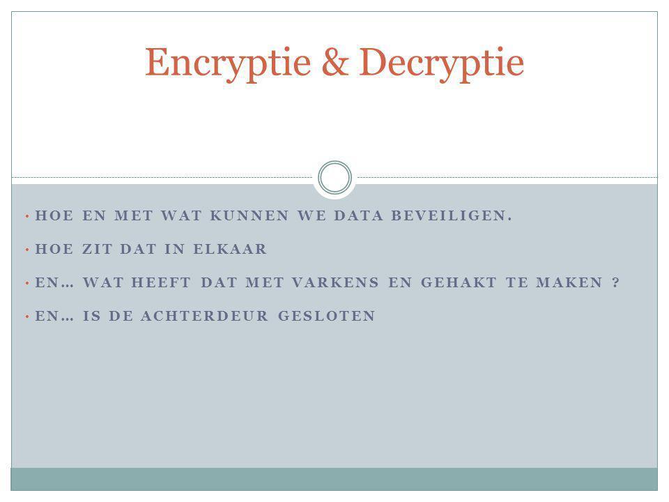 De verschillende vormen De meest voorkomende vorm is een file aanmaken waarvan de inhoud wordt beveiligd door een paswoord en de inhoud is geëncrypteerd.