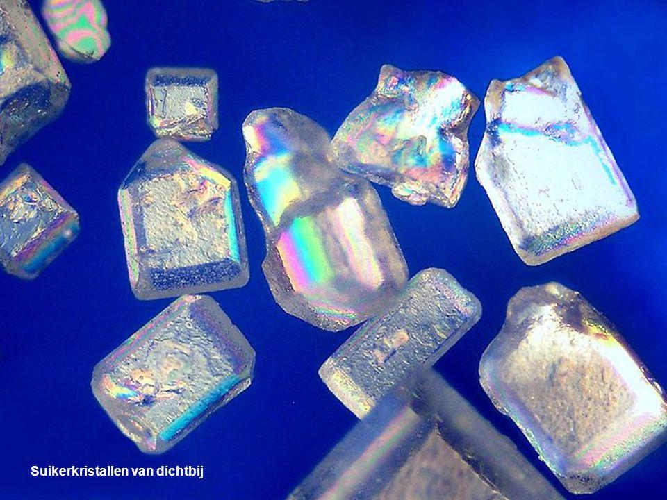 Suikerkristallen van dichtbij